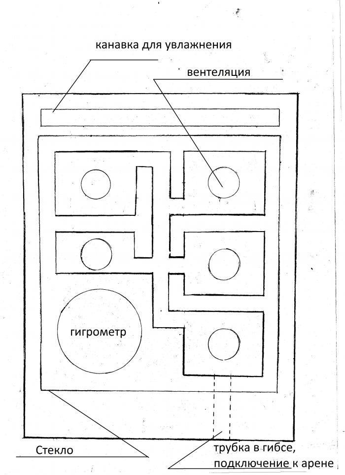 чертеж формикария