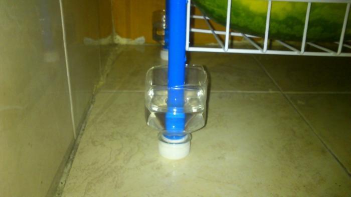 Защита от муравьёв :)