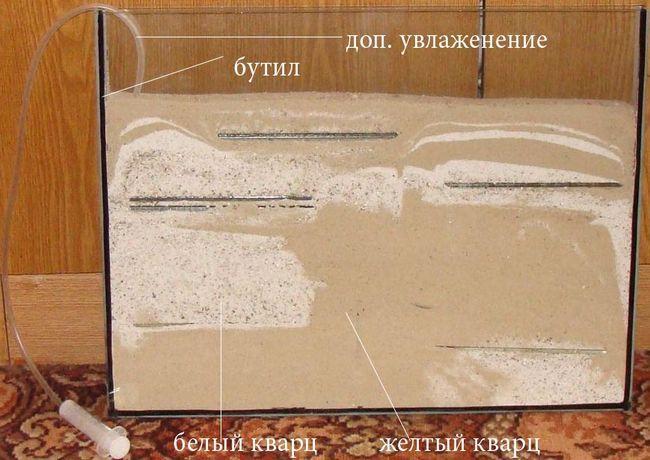 Вертикальный формик с белым и желтым кварцевым песоком
