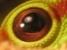 Аватар пользователя antoha_bla
