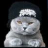 Аватар пользователя Madcat