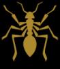Аватар пользователя муравей1