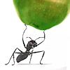 Аватар пользователя Mr.Green